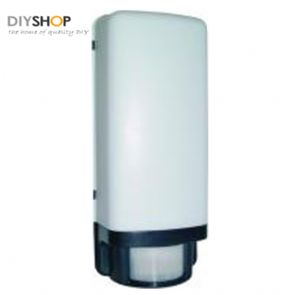 Security light with motion detector